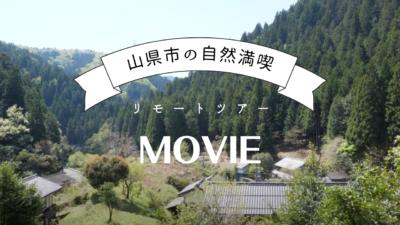 リモートツアー動画